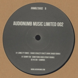 Various ‎– Audionumb Music Limited 002 (12