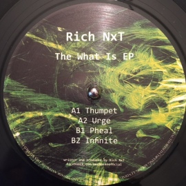 Rich NxT ‎– The What Is EP [12